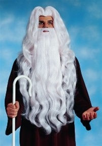 Deluxe Wizard Beard and Wig